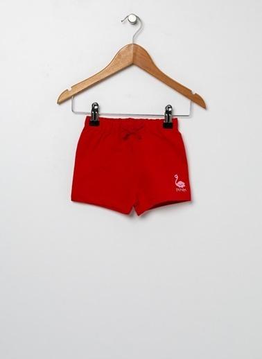 Koton Şort Kırmızı